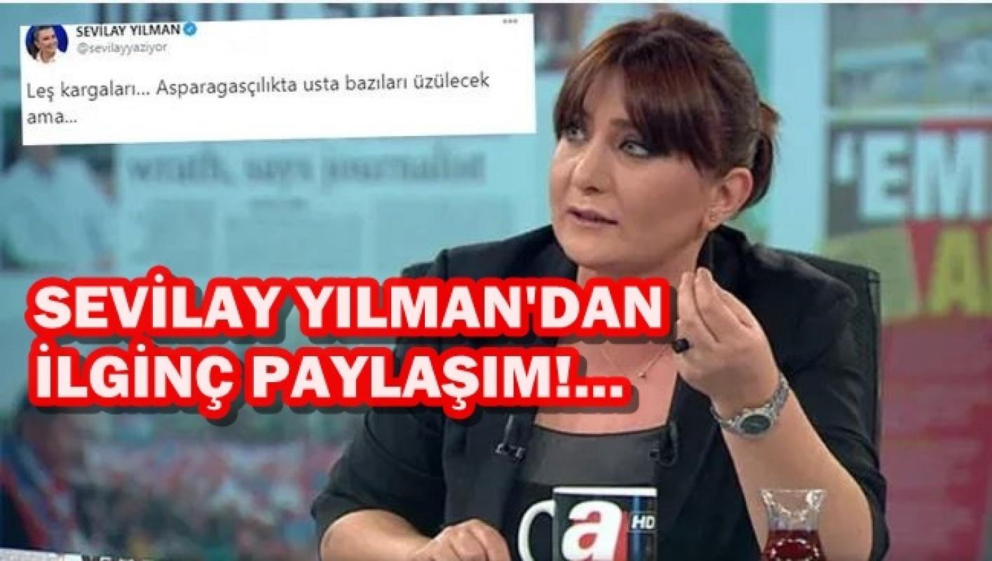 Gazeteci Sevilay Yılman kime 'Leş Kargaları' dedi?
