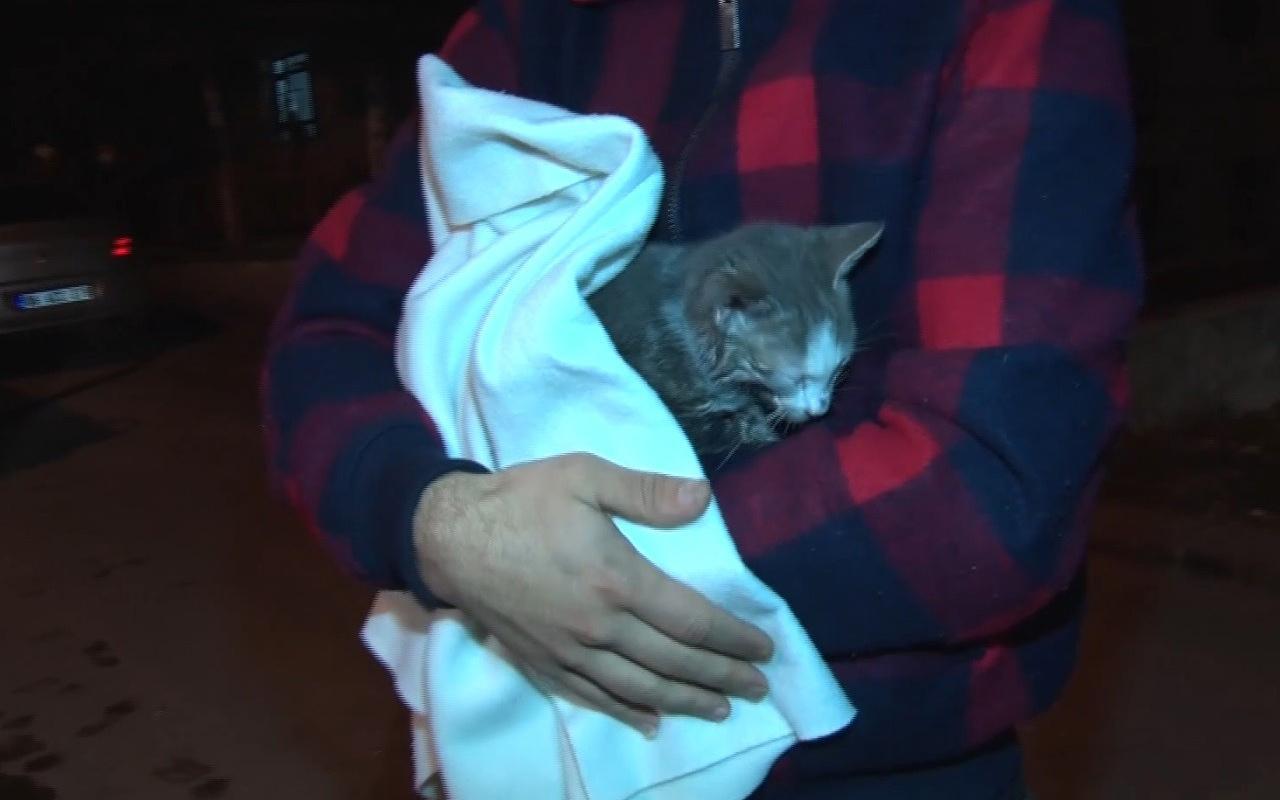 Ankara'da kedinin çıkardığı ses faciayı engelledi!