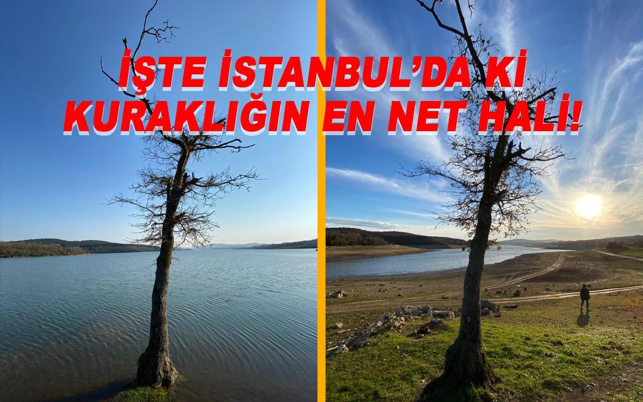 İşte İstanbul'da yaşanan kuraklığın boyutu